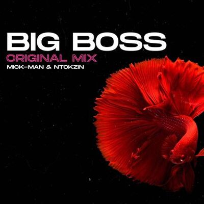 Mick-Man & Ntokzin – Big Boss