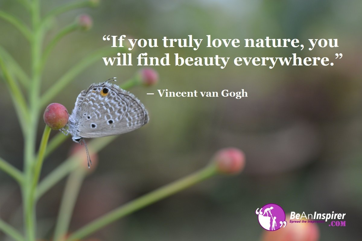 Beauty Of Nature Quotes 2