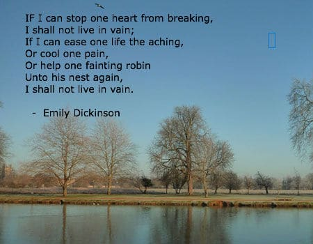 Emily Dickinson Most Famous Poems 5