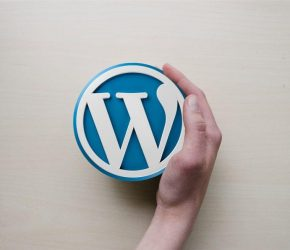 Curso Intensivo de WordPress 2019