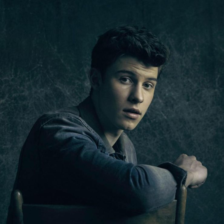 shawn mendes treat you better