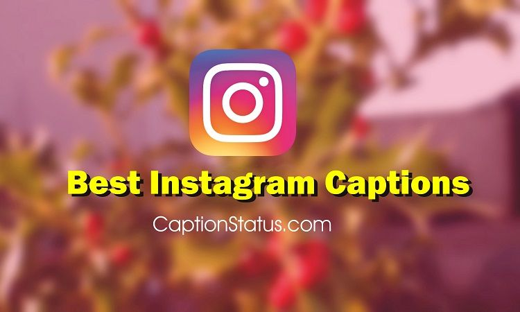 Quotes For Instagram Caption 1