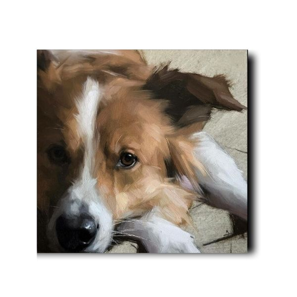 canvas dog paintings-1