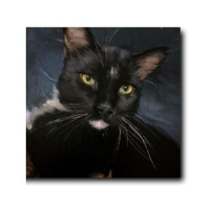 beautiful cat paintings-1