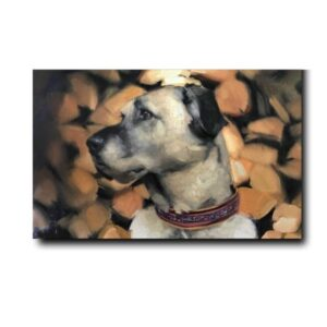 Pet Paintings On Canvas-2