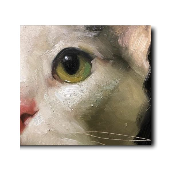 Oreo Painting | Cat Painting | Oil On Canvas