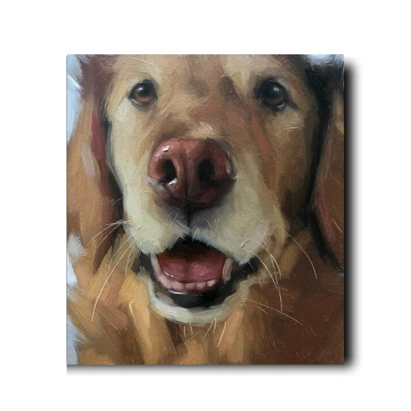 buy pet portraits online-1