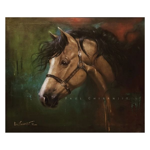freedom-in-chains-tribute-to-mastang-wild-horse-oil-on-canvas-paintings-by-chiranjit-paul-20x24