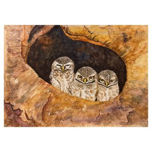 The Three Wise Owlets - WaterColor - 11x15 Inch