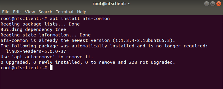 How to Install and Configure an NFS Server on Ubuntu 18.04 Using 11 Easy Steps 8