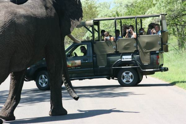 Cape Town to Johannesburg via Victoria Falls and Kruger Tour