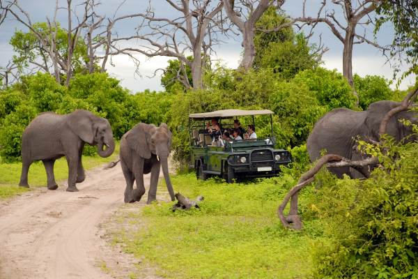 Kruger, Swaziland & Zululand - Accommodated Tour