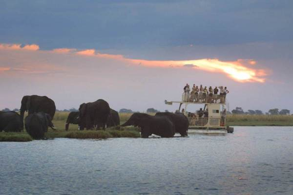 Johannesburg to Nairobi Safari Tour