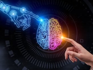 Human Brain & AI 'SEE' Objects in Same Way, Researchers Discover