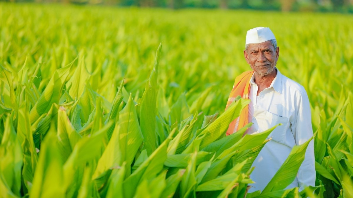 December 23rd: Kisan Diwas in India (Farmer's Day) - Digpu