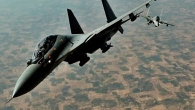 IAF steps in to douse Nagaland's Dzukou Valley wildfire -Digpu