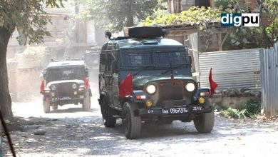 J&K Police identifies three militants killed in Tral as locals - Digpu News