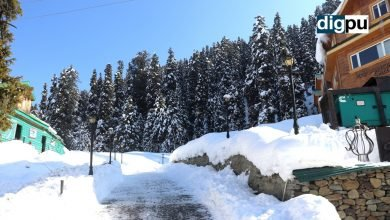 Heavy Snowfall in Kashmir chants the glory of this snow heaven - Digpu News