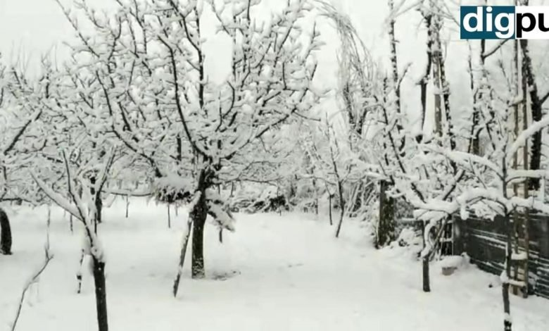Snowfall In Kashmir On New Year's Eve, Kashmir witnesses moderate snowfall - Digpu News
