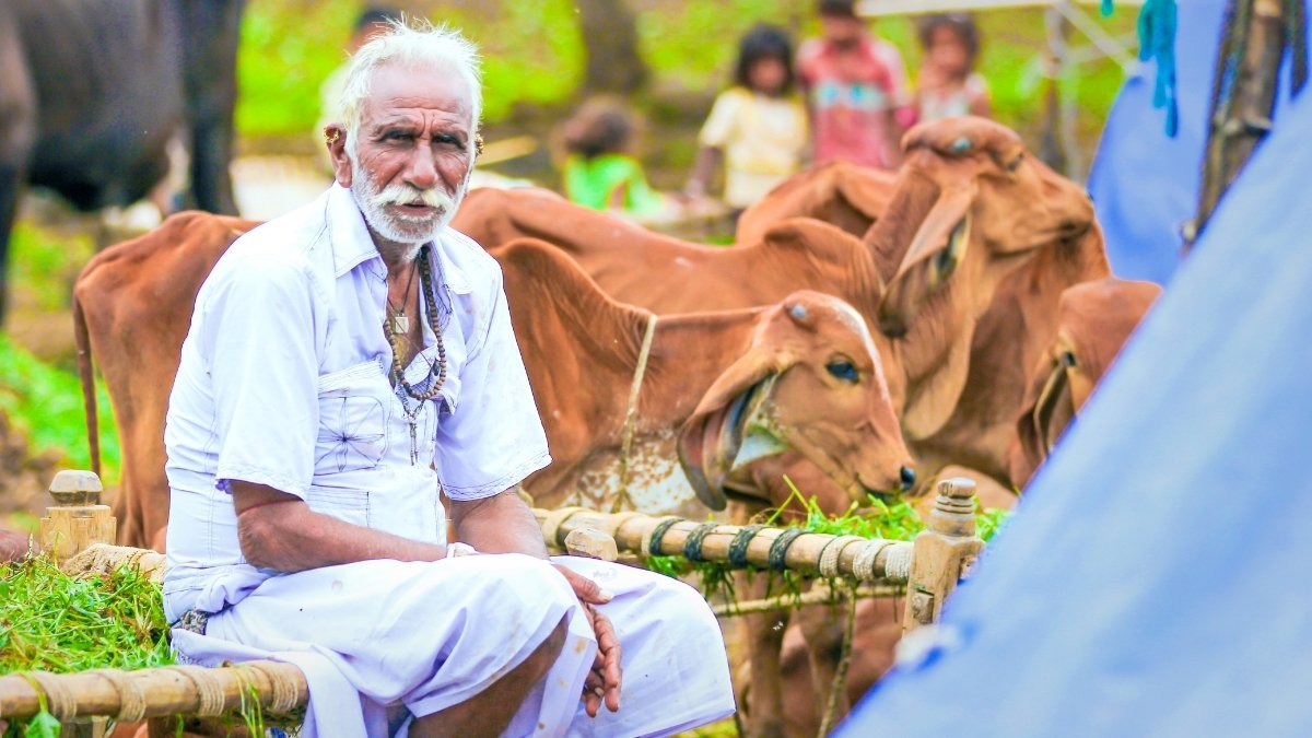 New Farm Laws: On Jan 15th, Congress to stage protest across India - Digpu