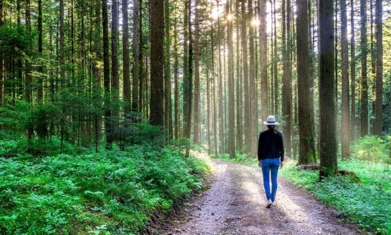 city people get a health boost from nature