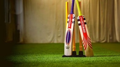 University of Cambridge says cricket bats should be made from bamboo (3)