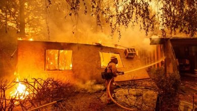 Greece Experiencing Raging Forest Fires: Officials Say Climate Change
