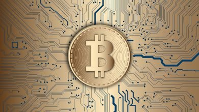 Cryptocurrency adoption zooms 880% worldwide