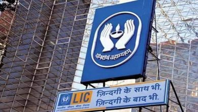 LIC's Rs 1 lakh crore IPO may be split into two