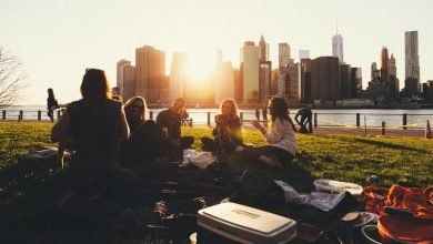 Picnic - Socialize after acute isolation