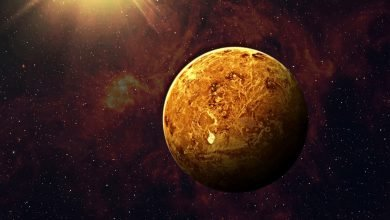 Contrary to earlier belief, study finds Venus doesn't have oceans