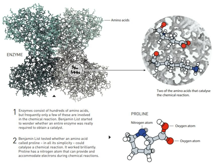 Nobel Prize 2021 for chemistry goes to scientists Benjamin List and David MacMillan for developing asymmetric organocatalysis