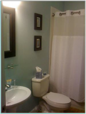 Best Paint Color For Small Bathroom With No Windows