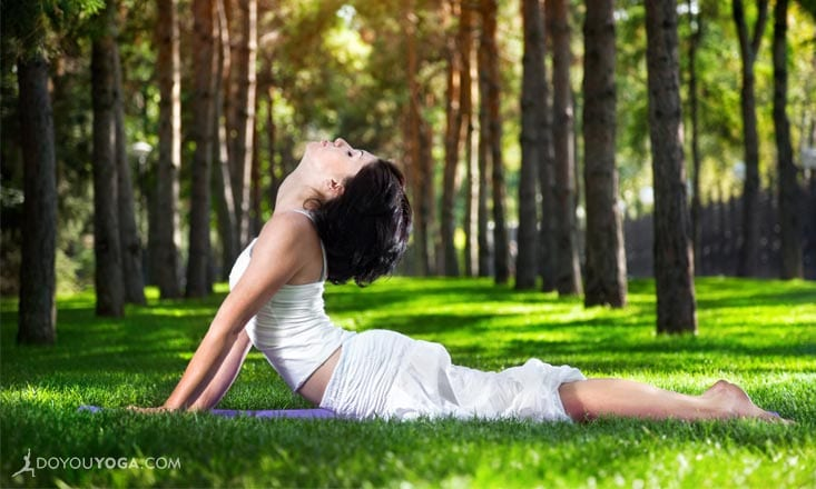 4 Ways Chinese Medicine Will Transform Your Life