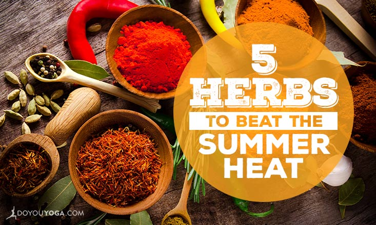 5 Herbs to Help You Beat the Summer Heat