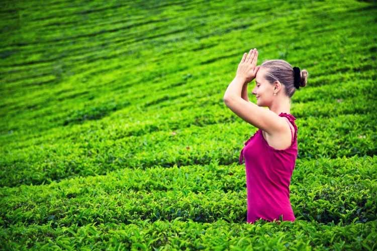 9 Ayurvedic Resources You Need To Know About