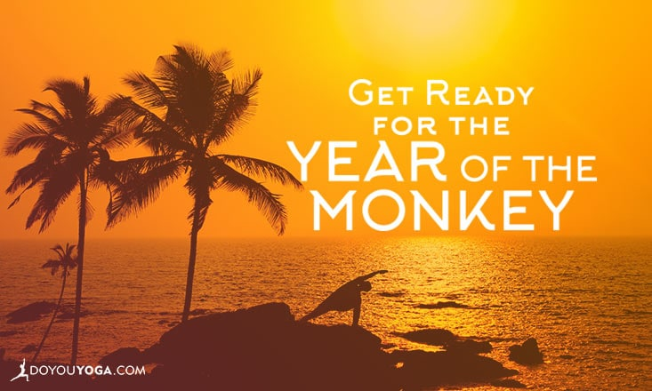 Get Ready for the Year of the Monkey!