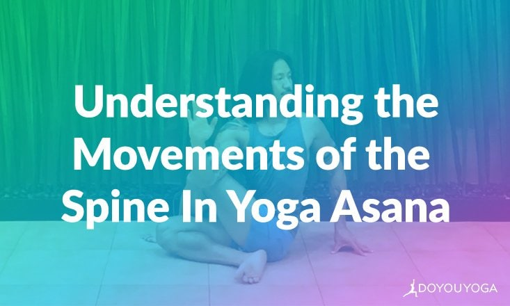 Understanding the 5 Movements of the Spine in Yoga Asana (ANIMATED)