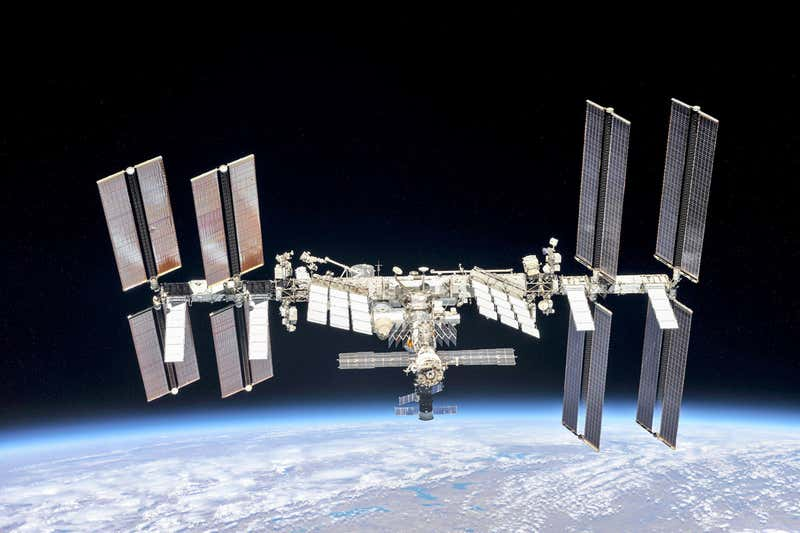 Mushrooms on the Chernobyl reactor absorb space radiation on the ISS