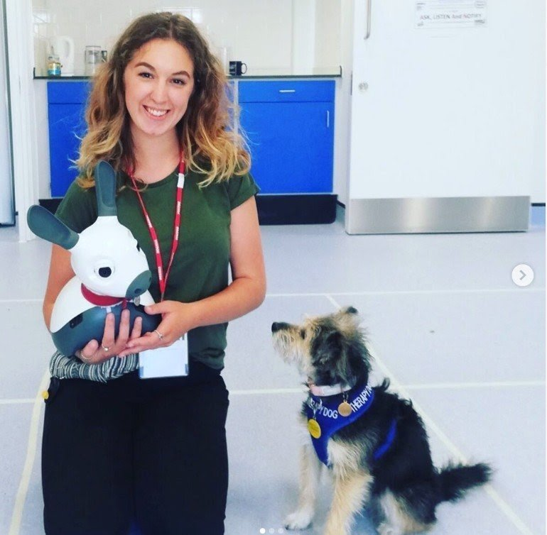 Biomimetic robots for pet therapy
