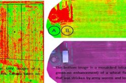 Applications of Low Altitude Remote Sensing in Agriculture