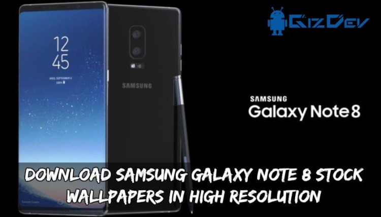 Download Samsung Galaxy Note 8 Stock Wallpapers In High Resolution