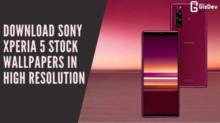 Download Sony Xperia 5 Stock Wallpapers In High Resolution