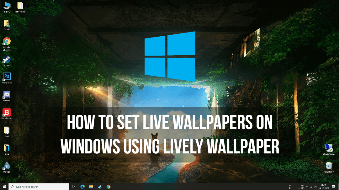 How to Set Live Wallpapers on Windows using Lively Wallpaper