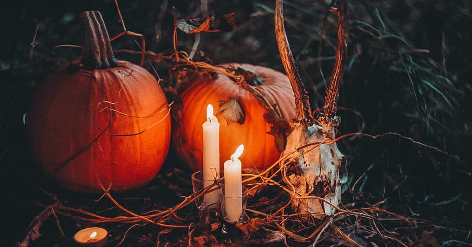 candles lit around an animal skull and pumpkins on the ground at night