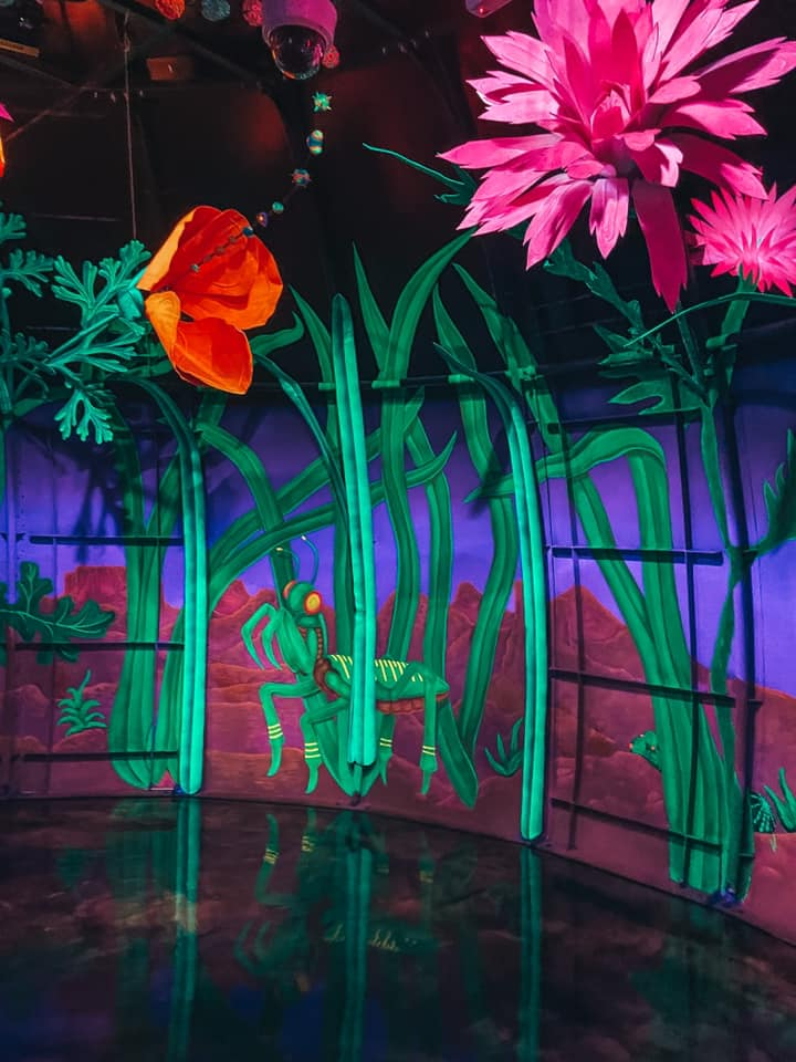 Neon colored paint and flowers inside of Meow Wolf