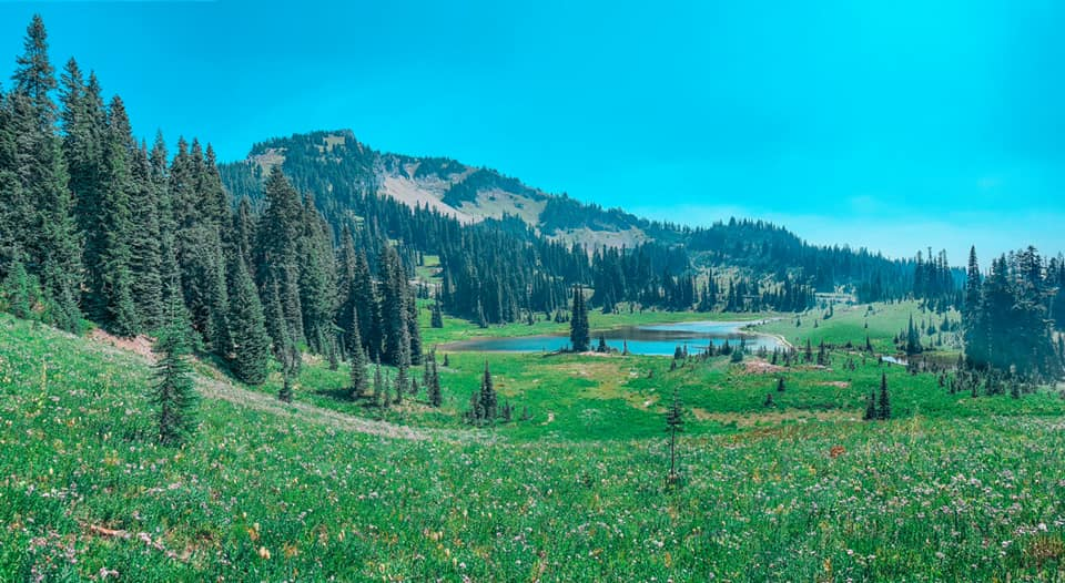 Seattle 4 day itinerary: hike Mount Rainier National Park