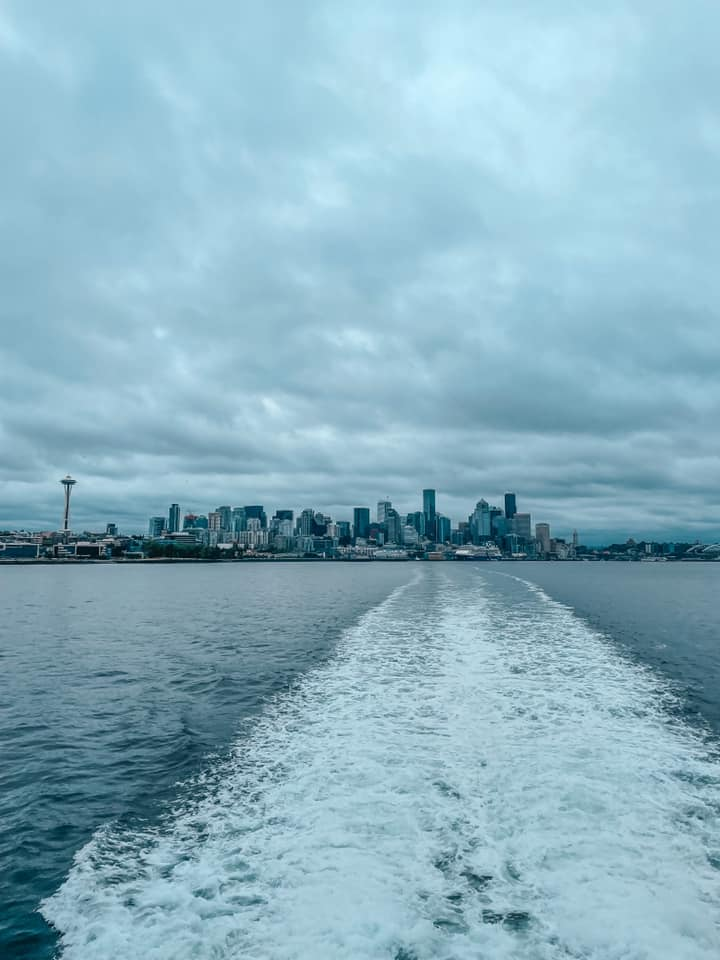 Seattle skyline view from sea