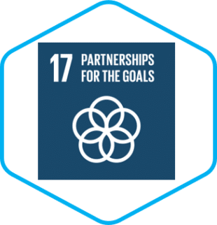 HL UN 17 GlobalGoals Partnerships for the Goals compressed