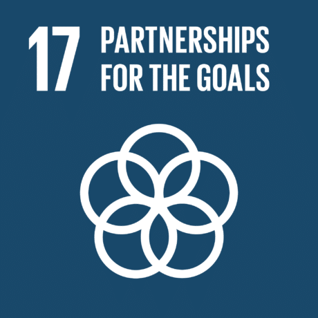 UN 17 GlobalGoals Partnerships for the Goals compressed